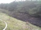 Brennt Böschung A1 Richtung HB